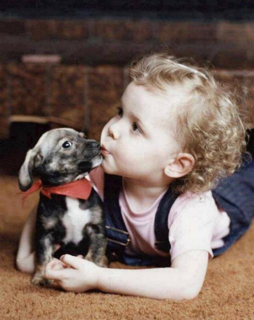 Chiens baby sitter - Page 3 X_5911