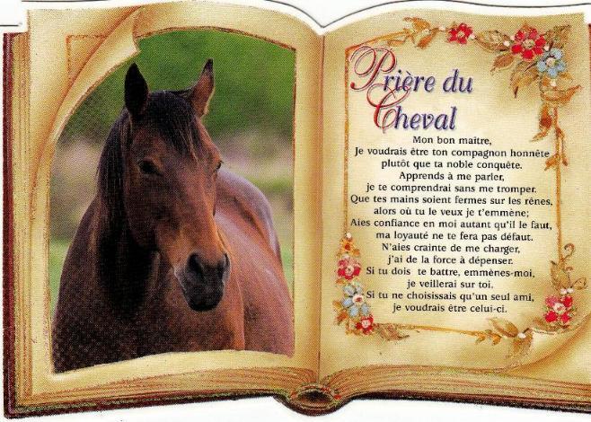 La prière du cheval  X_priy10