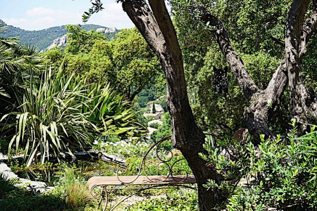 Bassin extérieur avec voiles de chine - Page 11 Dsc07714