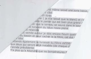 Bassin extérieur  - Page 9 Scan10
