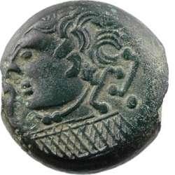 (Suessions) Bronze au Filet de toute beauté  T01_0110
