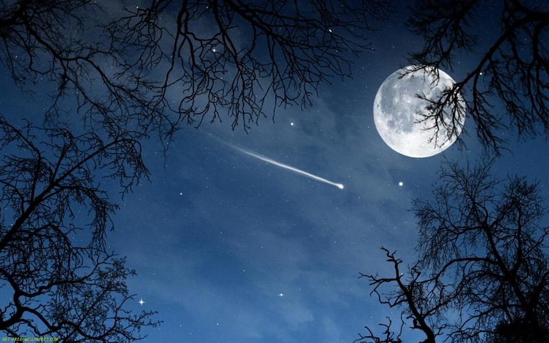 Au clair de Lune - Page 3 5246fd10