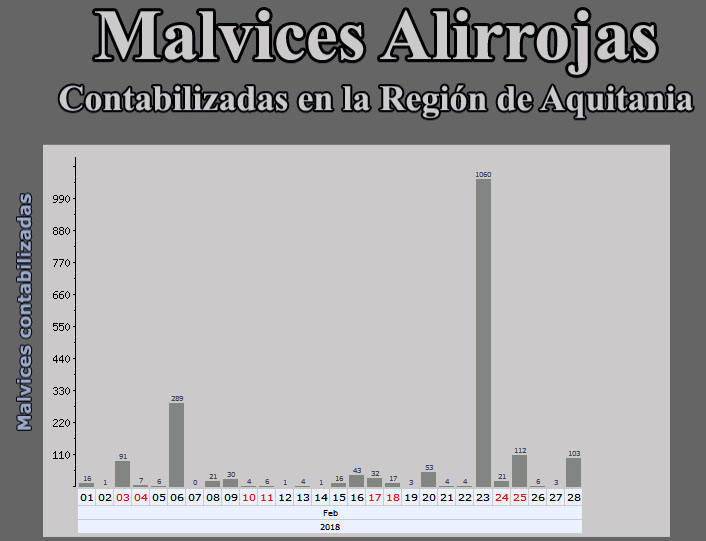 Malvices Alirrojas en Aquitania - Enero, Febrero y Marzo - 2018 Grafic67
