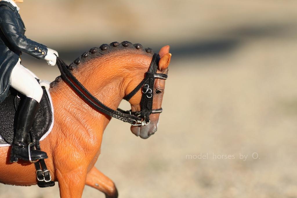 my Deborah McDermott's horses - Page 2 Dressa11