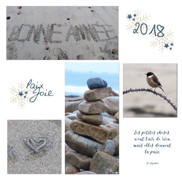 Bonne année 2018 - Page 2 Voeux213