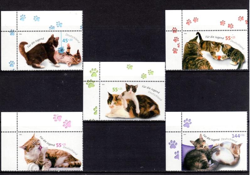 Katzen - Seite 2 Img20110