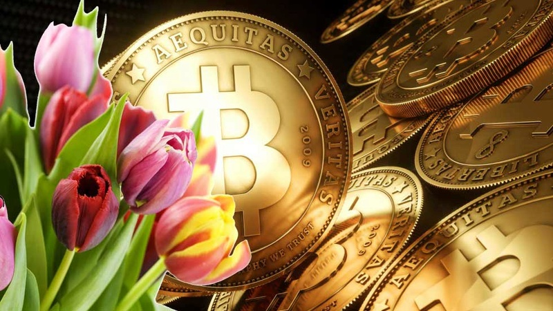 BITCOIN versus GOLD  - Page 3 Bitcoi15