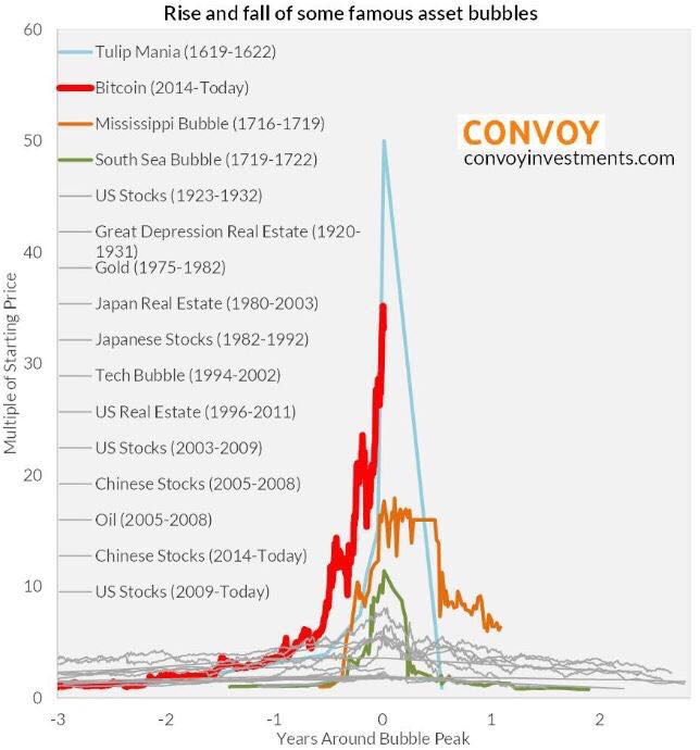 BITCOIN versus GOLD  - Page 3 Tulip_10