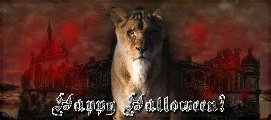Die Löwen Happyh10