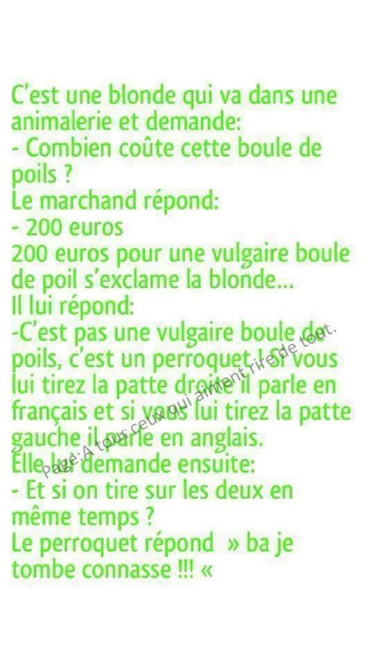 HUMOUR : Histoires de blondes  - Page 40 25994710