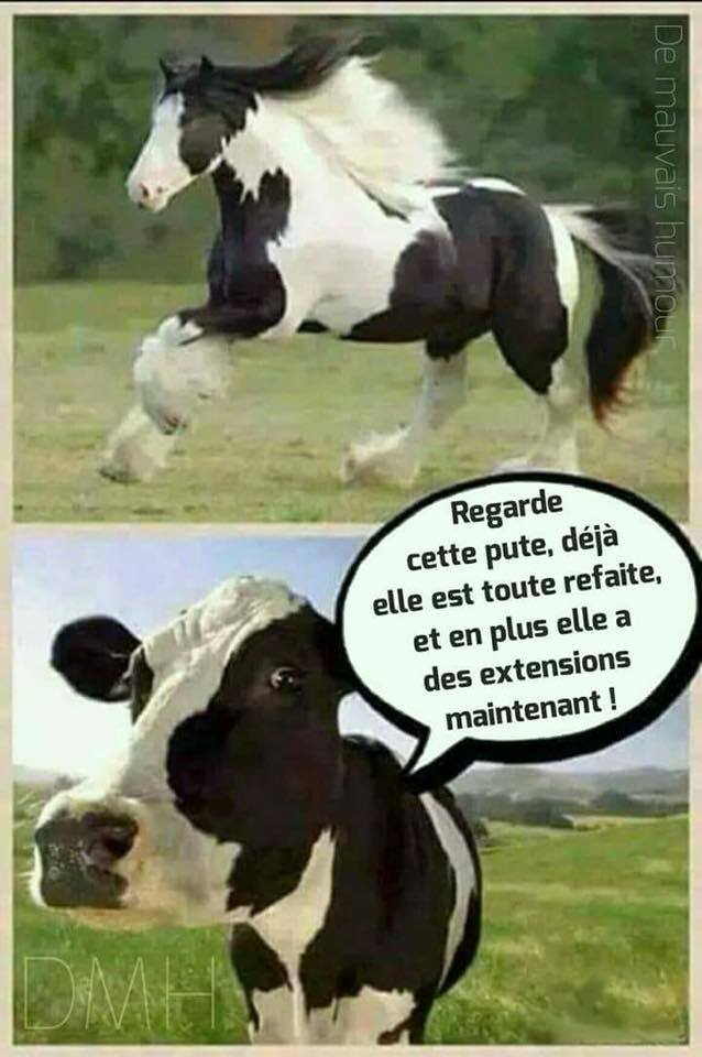Humour - Page 3 26991710