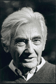 politique - Howard Zinn Zinnpo10