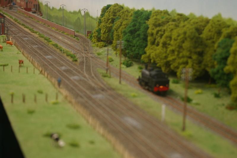 modelisme ferroviaire a st AMAND  Imgp5916