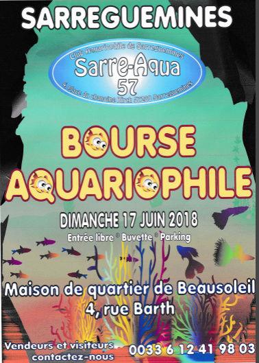Bourse Sarreguemines (57) - 17 juin 2018 Affich11
