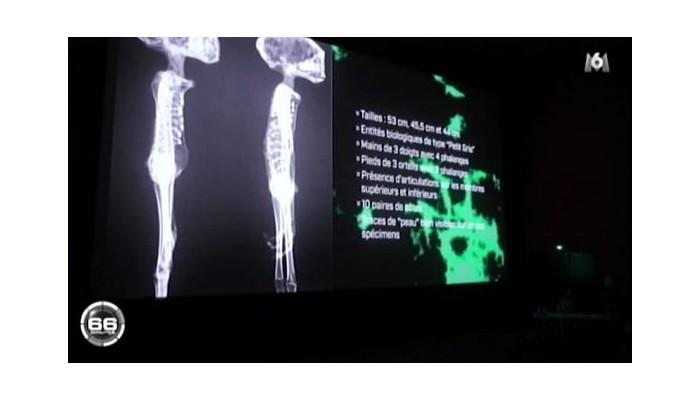 « Les Extraterrestres de Nasca-Alien Project-Ces pièces archéologiques mayas prouvent-elles un contact extraterrestre ? » Patric16