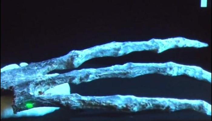 Pérou : Les momies à trois doigts ne sont pas humaines selon les scientifiques Sans1025