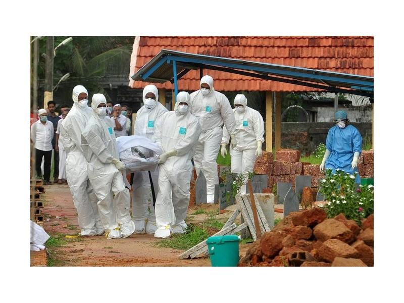 Pourquoi le virus Nipah inquiète tant les médecins Sans1483
