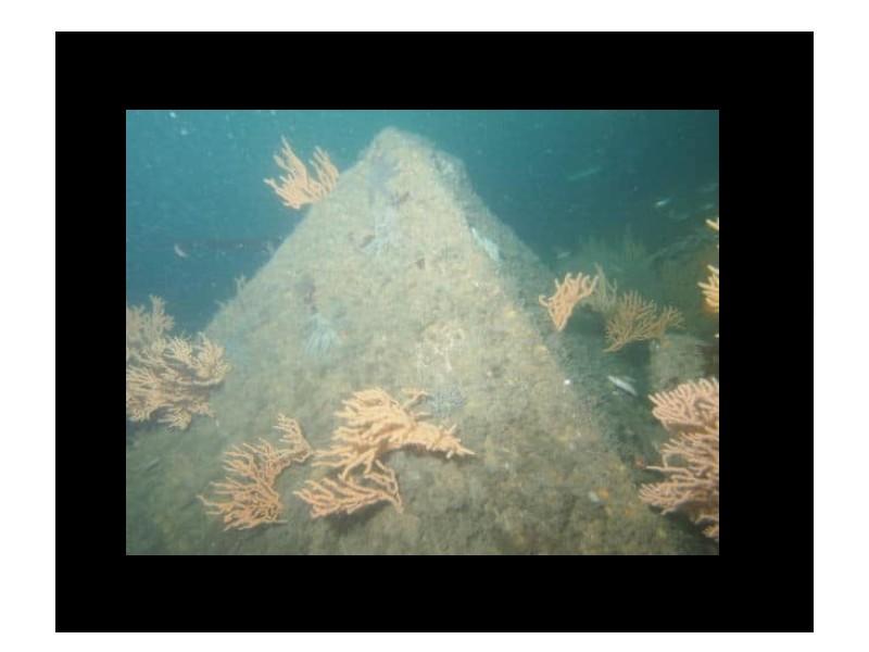 Mystère : une pyramide engloutie à 23 mètres de profondeur près de l'île LONGUE Sans1594