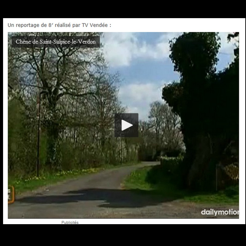 Le gros chêne de la Chevasse, Saint-Sulpice-le-Verdon (Vendée) Sans_462