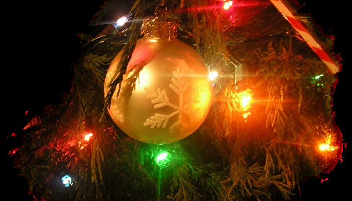 La période des Fêtes est autant synonyme de traditions de Noël que de réjouissances. Sans_478