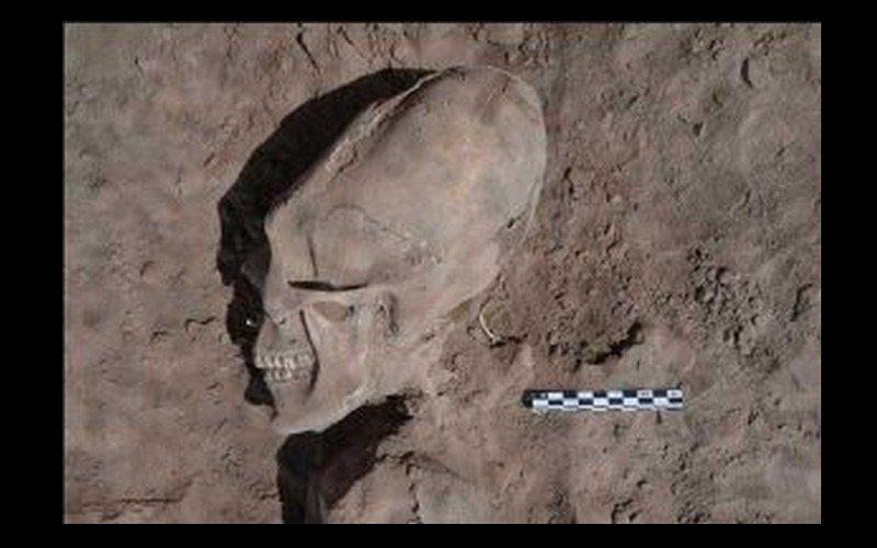 13 crânes allongés « extraterrestres » exhumés au Mexique Sans_678