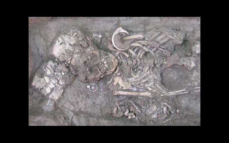 13 crânes allongés « extraterrestres » exhumés au Mexique Sans_679