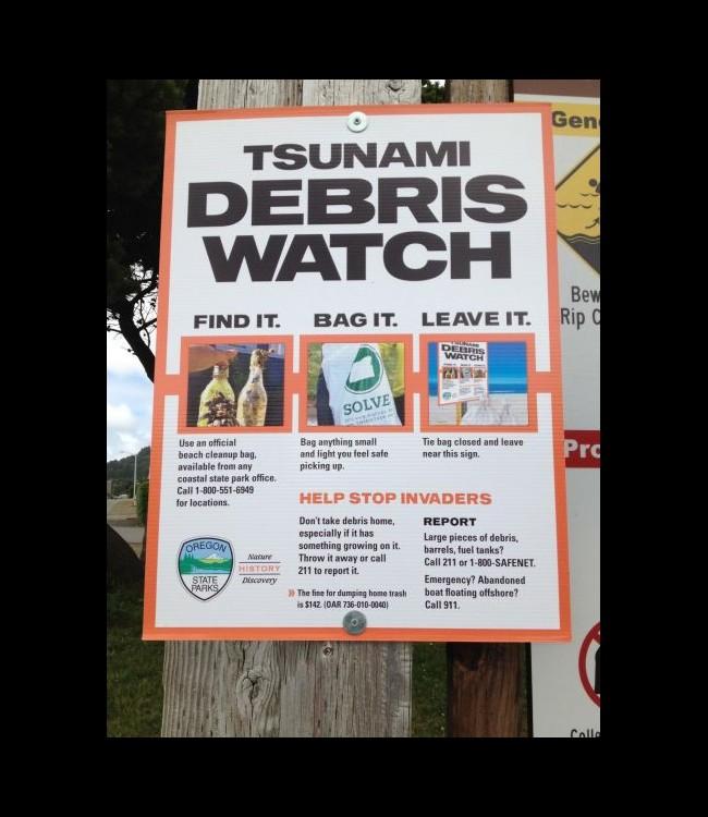 Le tsunami de 2011 a transporté des animaux marins du Japon jusqu'en Amérique Sans_t17