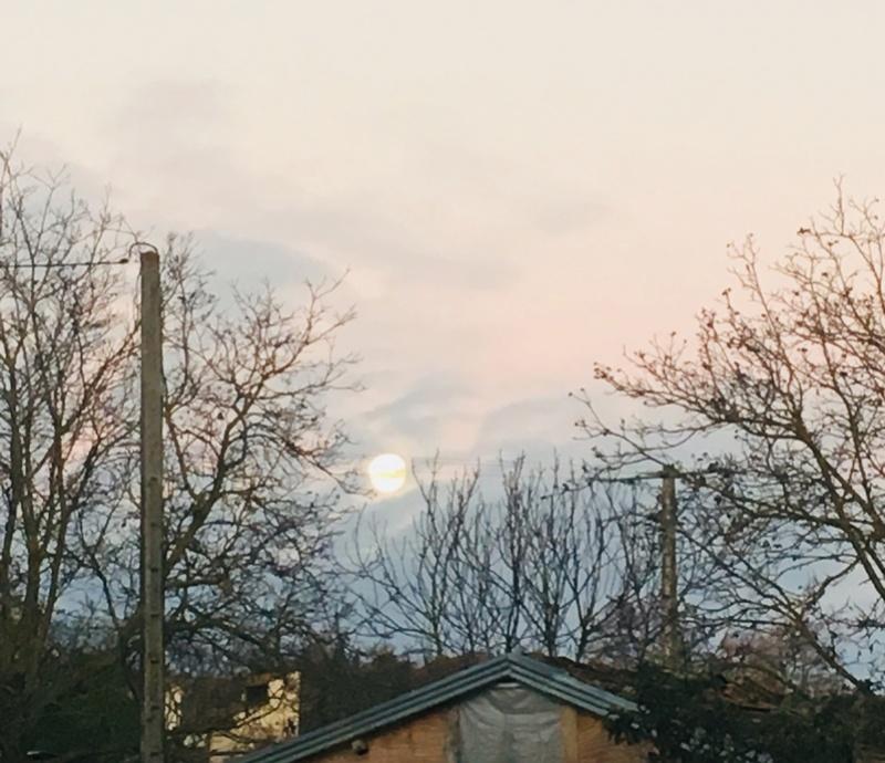 Pleine Lune 3 Décembre - Page 2 1392be10