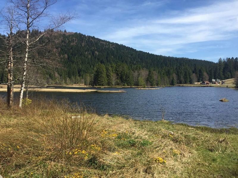 Lac de Lispach (Avril) Snapch10