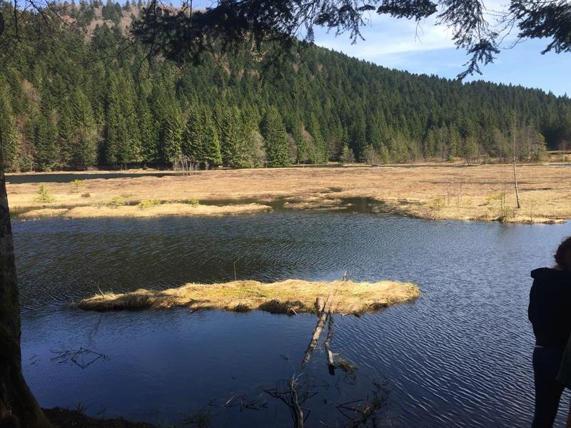 Lac de Lispach (Avril) Snapch12