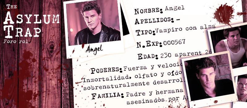 The Asylum Trap Angel310