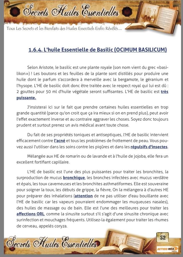 Le Tulsi ( Basilic Sacré)  33967310