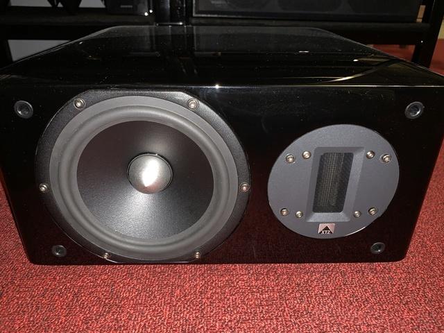 XTZ 99.25 Center MKII Speaker (SOLD) Img_0227