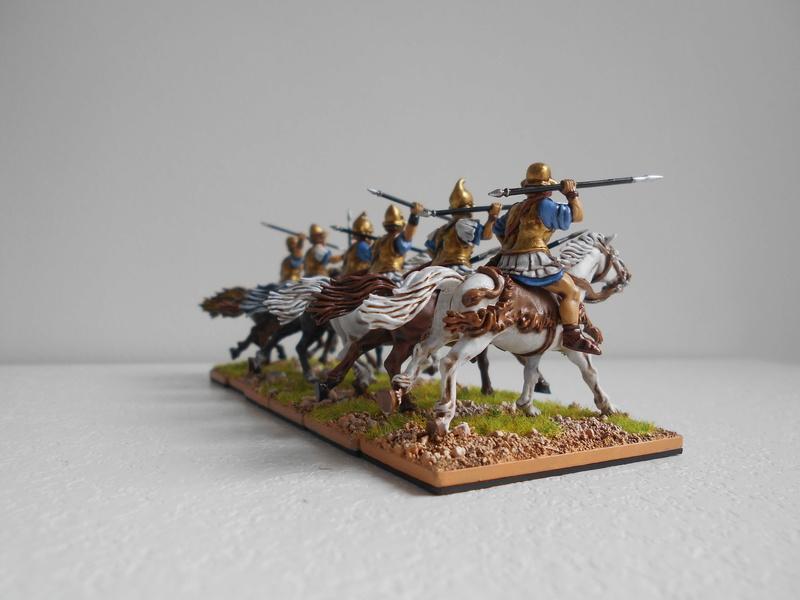 Armée Grecque Antique de Nico - Page 5 Dscn0316