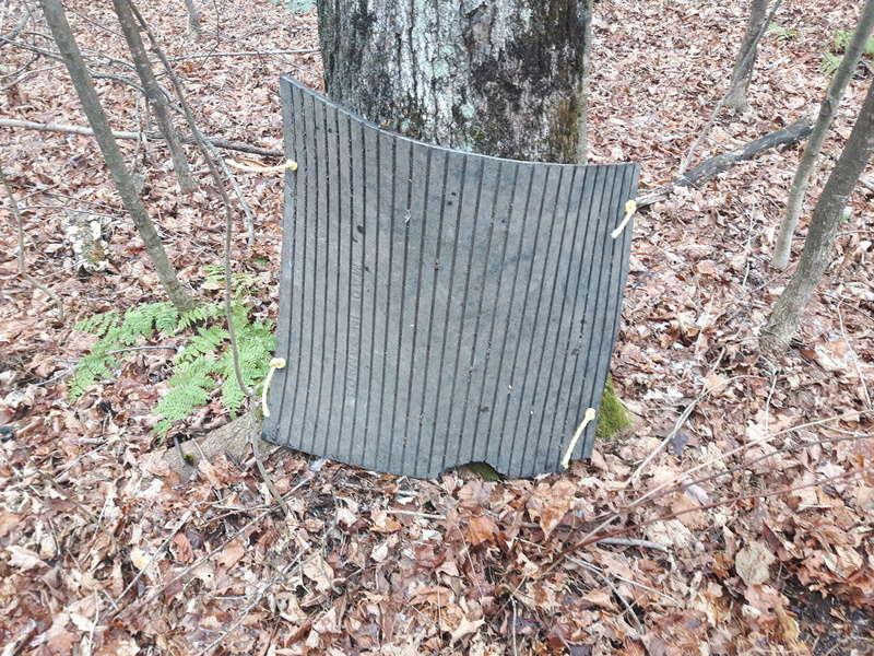 Proteger les pieds des arbres 20171110