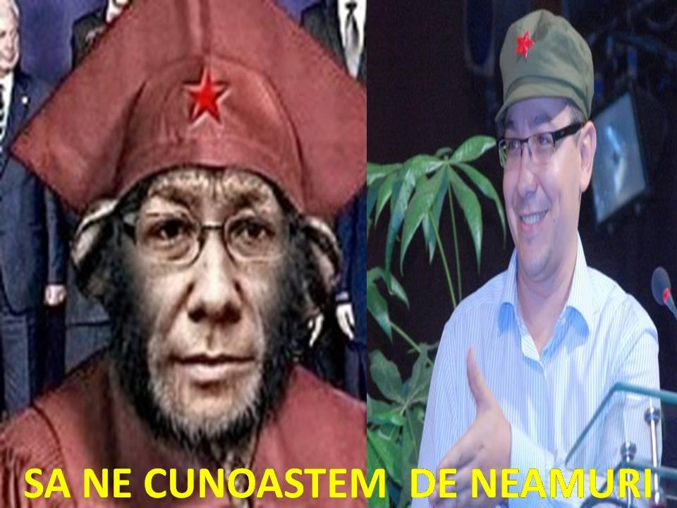 Cornel NistoRECTU : Ponta se visează la butoane Slide111