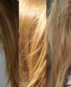 Questionnaire capillaire Cheveu10