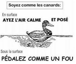 Ca papote, ça papote Canard10