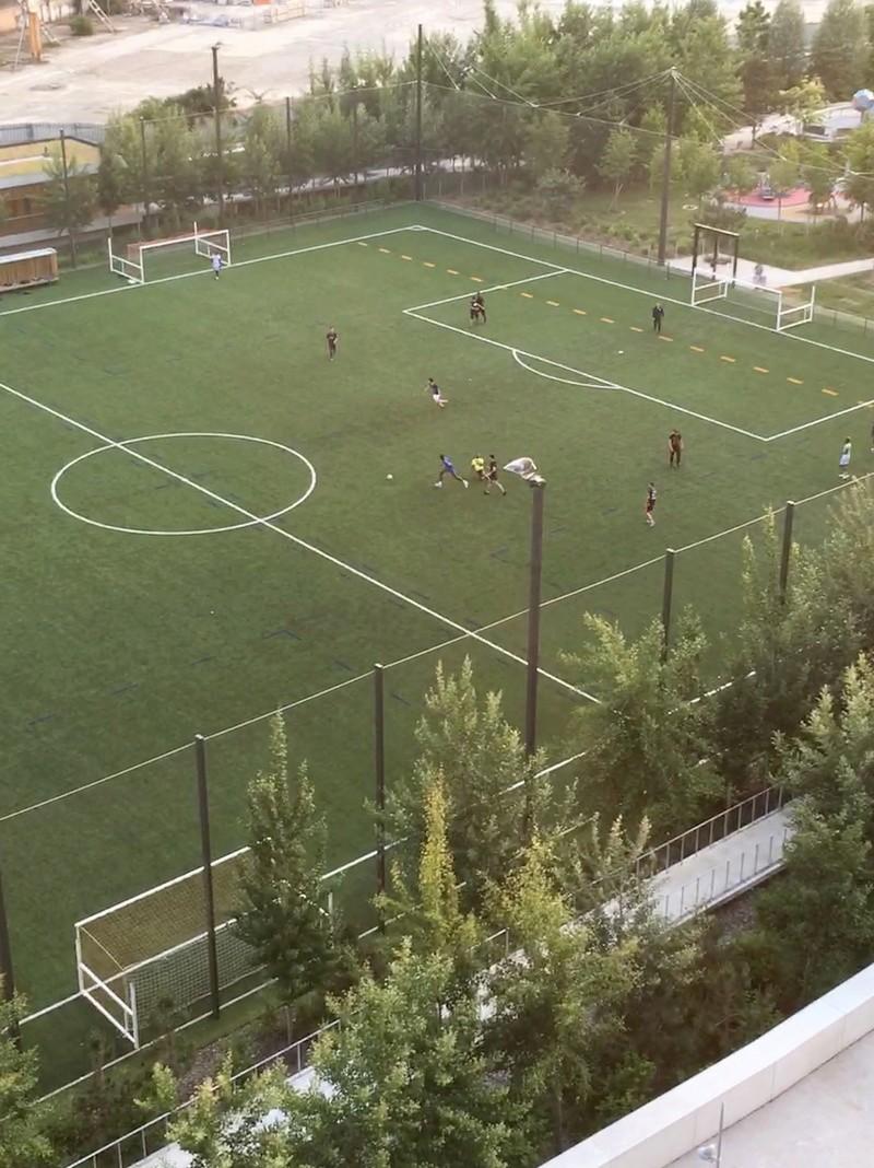 Terrain de foot et de rugby Img_8110