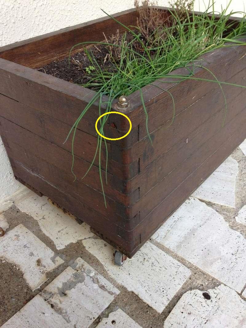 Bac a fleurs en bois Kk11