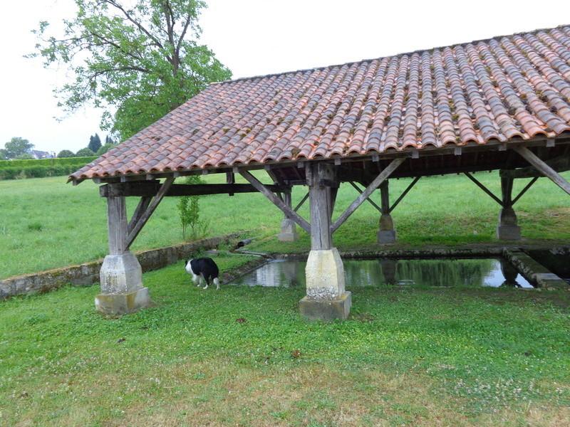 Dordogne (24) St Aulaye / Lavoirs Dsc01512