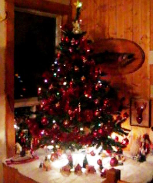 Bricolage de Noël - Page 6 C_tree10