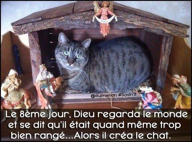 Bricolage de Noël - Page 6 Cat_cr10