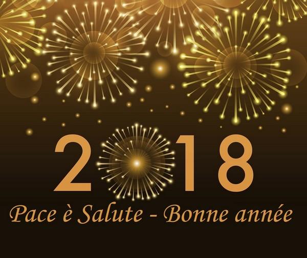 bonne année 2018 19209710