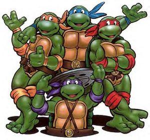 Boutis a Kouris - Page 5 Turtle10