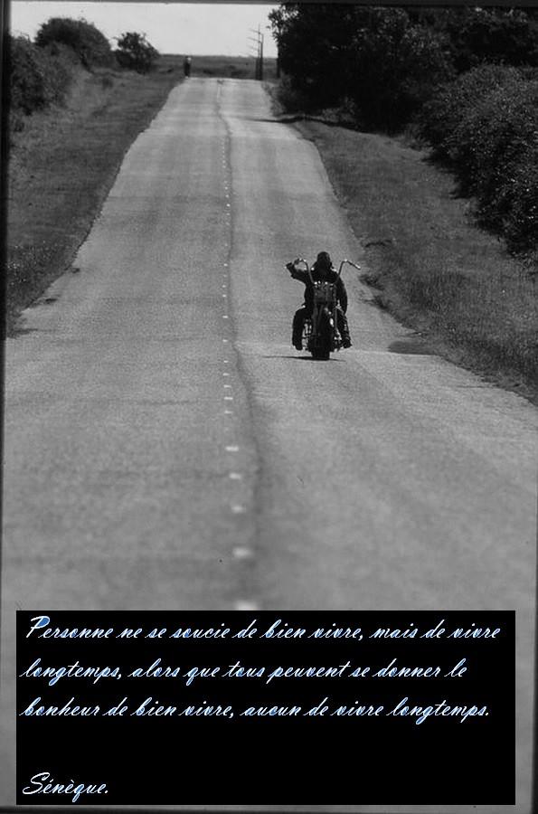 Biker et fier de l'être - Page 10 13062210