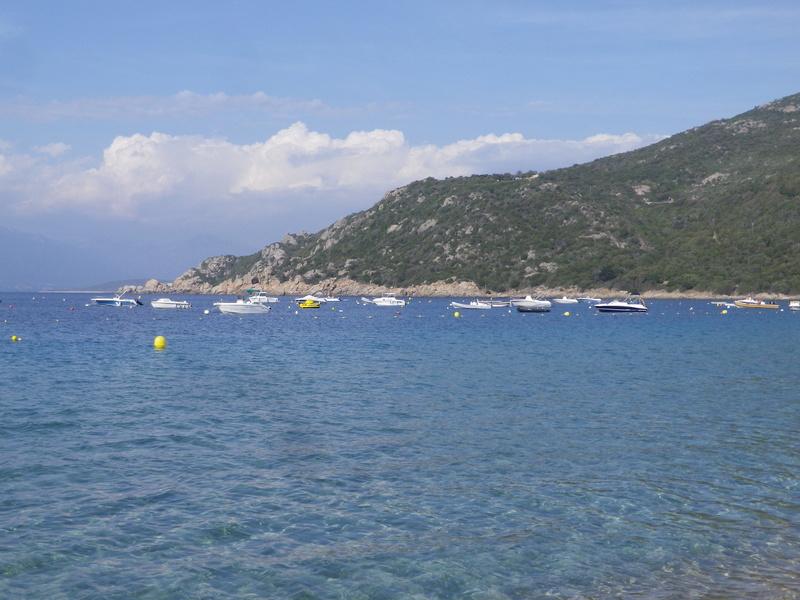 Séjour en Corse Mai 2017 - Page 3 Imgp5610