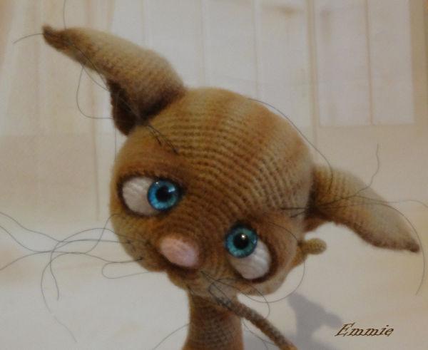 Dobby the Cat  1523