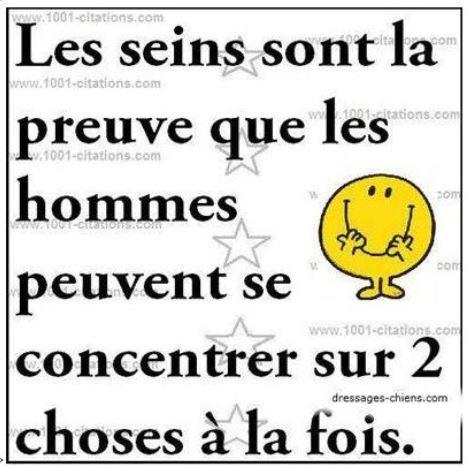 LE DICTON DU JOUR - Page 37 00ab111