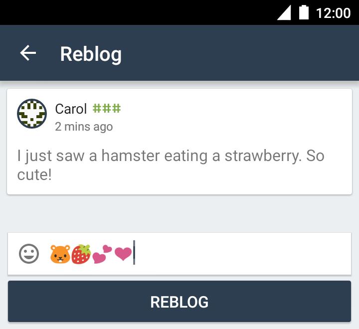 Руководство пользователя Briar Reblog11